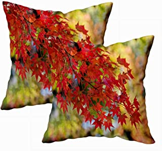 Fullentiart Fun Pillow Cases, Thanksgiving Day Gift in Tokyo Japan Cushion Soft Skin-Friendly Fade Wrinkle Resistant and Easy to Wash 18X18Inches 2Pcs
