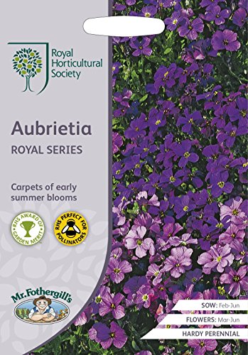 Mr Fothergills???Fleur???RHS Aubrieta Royal Series???400?graines