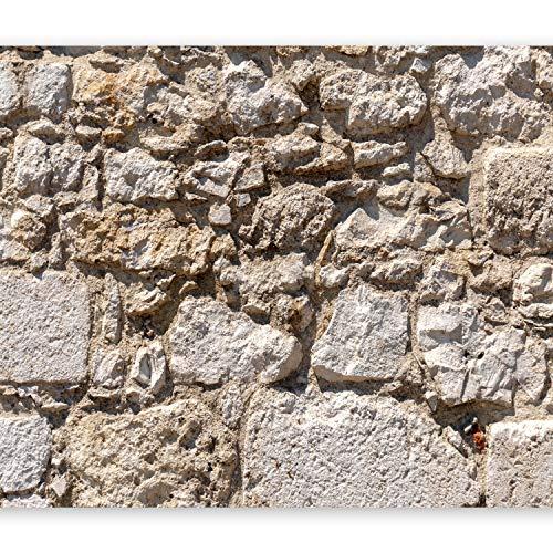 murando - Fototapete Steinoptik 400x280 cm - Vlies Tapete - Moderne Wanddeko - Design Tapete - Wandtapete - Wand Dekoration - Steintapete Steine Stein Mauer Steinoptik 3D f-B-0141-a-a