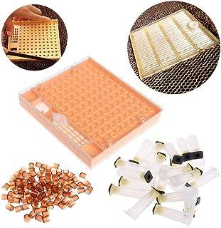 10pcs Plastic Queen Bee Cages Isolator Rearing Beekeeper Beekeeping Tool Ws