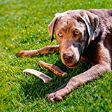 Hundesnack Geweih Full Chew Größe III: ca. 15 cm / 80 – 120 g - 5