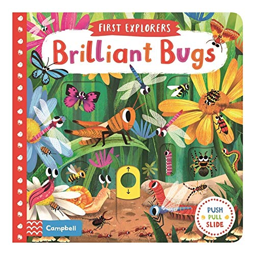 Brilliant Bugs (First Explorers, Band 8)