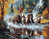 Fuumuui Pintura DIY por números, Regalo Digital para Pintura al óleo DIY sobre Lienzo - caballos 16x20 Pulgadas