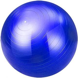 QCRLB Yoga Ball, Child Adult Gym Ball Beginner Balance Ball Pregnant Women Childbirth Ball (Color : #1, Size : 55cm)