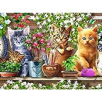 DIY5Dダイヤモンドペインティングキット猫動物モザイククロスステッチフルラウンドドリルラインストーン刺繡アートクラフト大人のための初心者の家の装飾ギフト40X50Cm