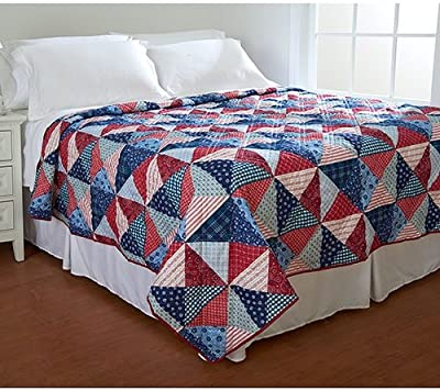 Amazon Ashley Cooper Pinwheel Print Quilt In Twin Size Home