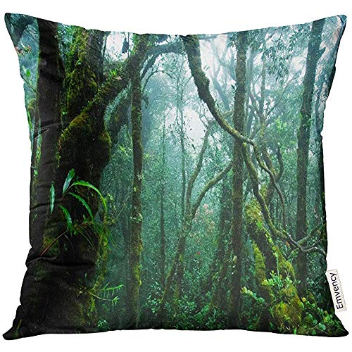 QDAS Throw Pillow Cover Green jungle Tropical Rainforest Forest Tree Regenkussensloop, decoratief, diep, decoratie voor thuis, vierkant