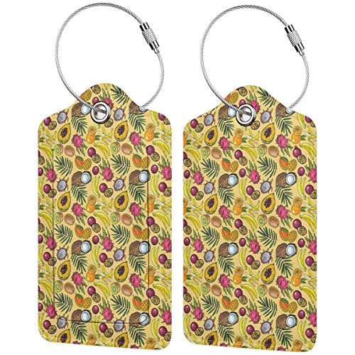 VORMOR Luggage Tag with Privacy Cover,Various Tropical Fruits Kiwi Mango Papaya Coconut Sweet Juicy Tropical Summer Food,Baggage Labels, Suitcase ID Tags for Travel Suitcases Handbags,(2 Pack)