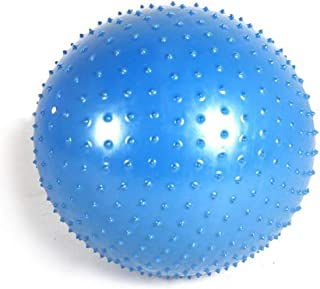 Antar ATCP Rehabilitation Massage Ball 65 ATCP Rehabilitation Massage Ball, Diameter 65 cm, Green Blue, 1100 g