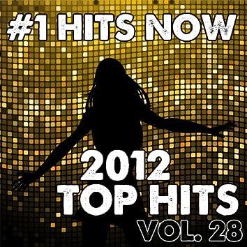 2012 Top Hits, Vol. 28