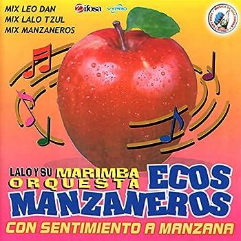 Mix Leo Dan  Siempre Estoy Pensando en Ella / Como Te Extraño Mi Amor / Celia / Te He Prometido / Mary Es Mi Amor