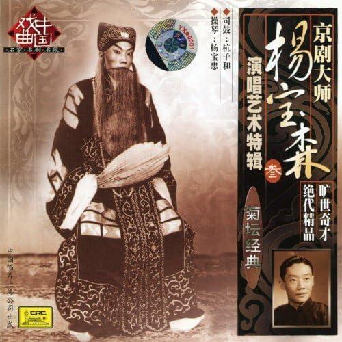 Yang Baosen