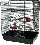 Interzoo Remy Cage pour rats, hamsters et autres rongeurs