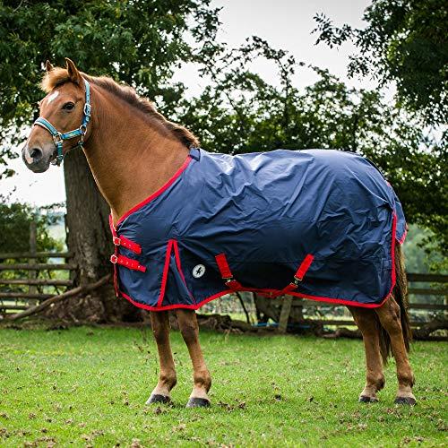 Derby House Classic leggero standard per cavallo, Navy