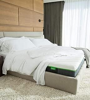 Cariloha Luxury Bamboo Mattress - Advanced Side-Wedge Support Signature Bamboo Comfort Foam - Luxury Memory Foam - Flex Flow Dual Density Base Foam - 10 Year Warranty (Twin XL)