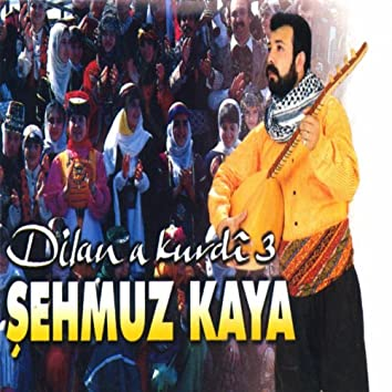 Dilan A Kurdî, Vol. 3 (Kürt Düğünü)