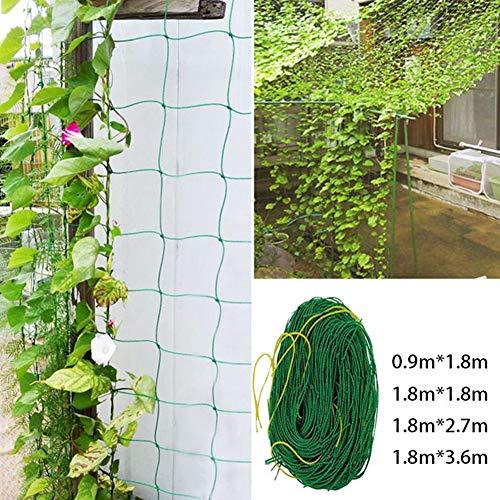 Le yi Wang You Spalier-Netz - Hochleistungs-Garten-Spalier-Netz Für Kletterpflanzen - Sehr Starke Unterstützung Für Gemüse, Clematis, Gurken, Tomaten L.None