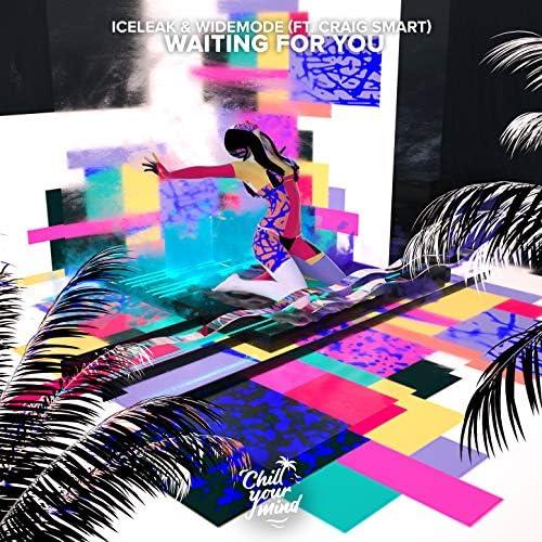 Iceleak & Widemode feat. Craig Smart