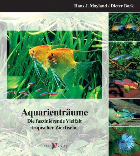 Aquarienträume: Die faszinierende Vielfalt tropischer Zierfische