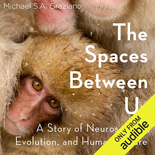 Couverture de The Spaces Between Us