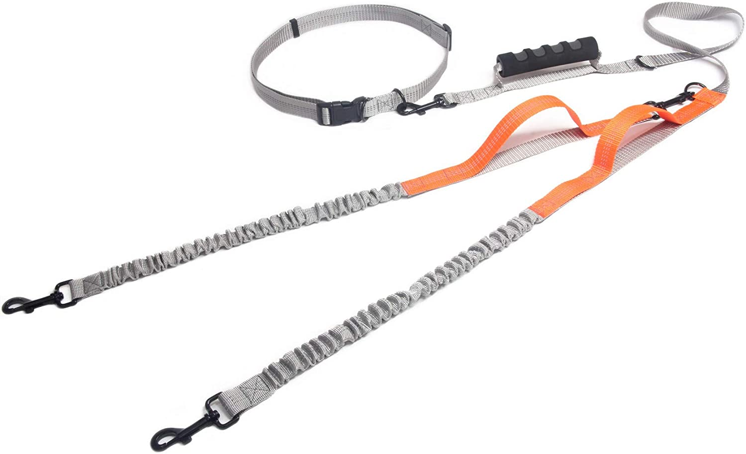 Maxpower Planet Hands Free Dog Leash with Double Handle and an Extra Detachable Bungee Leash for Running with 2 Dogs