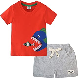Little Boy Short Sleeve T-Shirt and Shorts 100% Cotton Short Sleeve Summer Outfit Clothing Set 2PCS