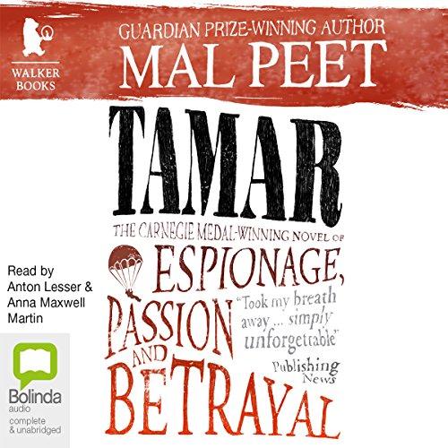 Tamar audiobook cover art