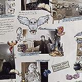 FS635_17 Harry Potter - Cuaderno de tela de algodón para tapicería (metro por metro)