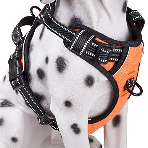 PoyPet No Pull Dog Harness, Reflective Vest Harness with 2 Leash Attachments and Easy Control Handle(Orange,L)