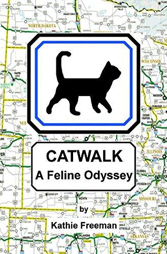 Catwalk (English Edition)