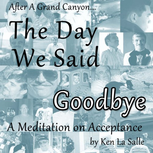 The Day We Said Goodbye audiobook cover art