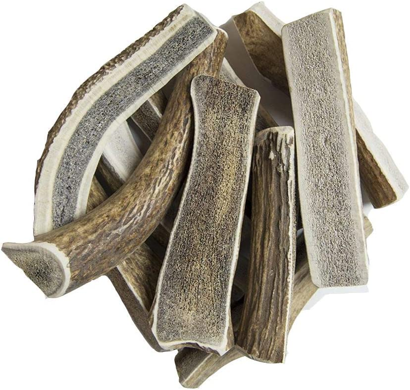 hotspot pets Split Elk Antlers for Dogs Chews Spring new work one after another Long Max 84% OFF - 7+ Dog Inch