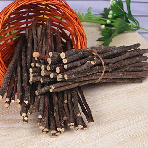 Hearsbeauty natur Holz Kauen Sticks Zweige für kleine Haustiere Kaninchen Hamster Meerschweinchen Spielzeug - 5