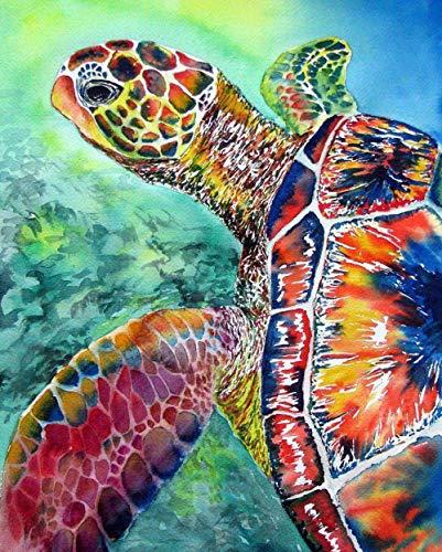 Wzjxzsynl Digitales Malen nach Zahlen-Kits Bunte Schildkröte Dekoration für Zuhause Neue Unterkunft Hochzeit Geschenkfür Erwachsene Kinder Anfänger