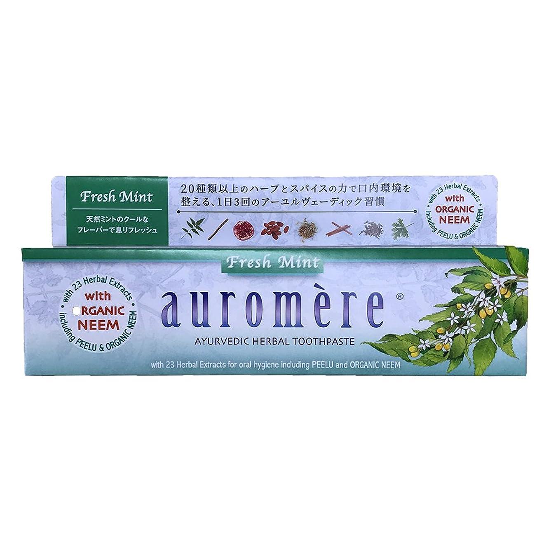 人気の薬を飲む粉砕するオーロメア 歯磨き粉 フレッシュミント (100g)