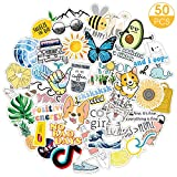 50PCs VSCO Stickers for Hydro Flask, Enjoyee Cartoon Waterproof Vinyl Water Bottle Stickers for Teens, Girls for VSCO Girls with Wrapping Box Decorated