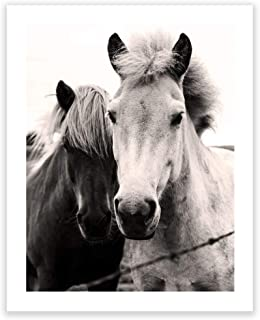 Humble Chic Wall Art Prints - Unframed HD Printed Modern Picture Poster Decorations for Home Decor Living Dining Bedroom Kitchen Bathroom Office Dorm Room - Two Horses Cute Animals, 16x20 Vertical