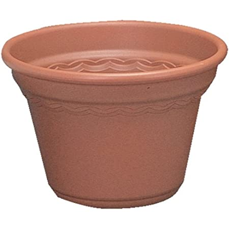 アイリスオーヤマ 鉢 コルティポット 14号 テラコッタブラウン