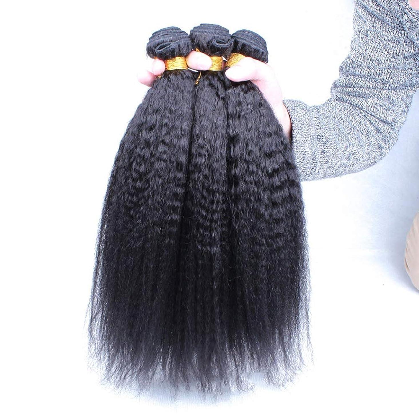 儀式ノベルティ滅びるYrattary ブラジルの変態ストレート人間の髪の毛の束焼きストレート人間の髪の毛の拡張子100%人毛エクステンションナチュラルブラック(10インチ-24インチ)小さな巻き毛のかつら (色 : 黒, サイズ : 22 inch)