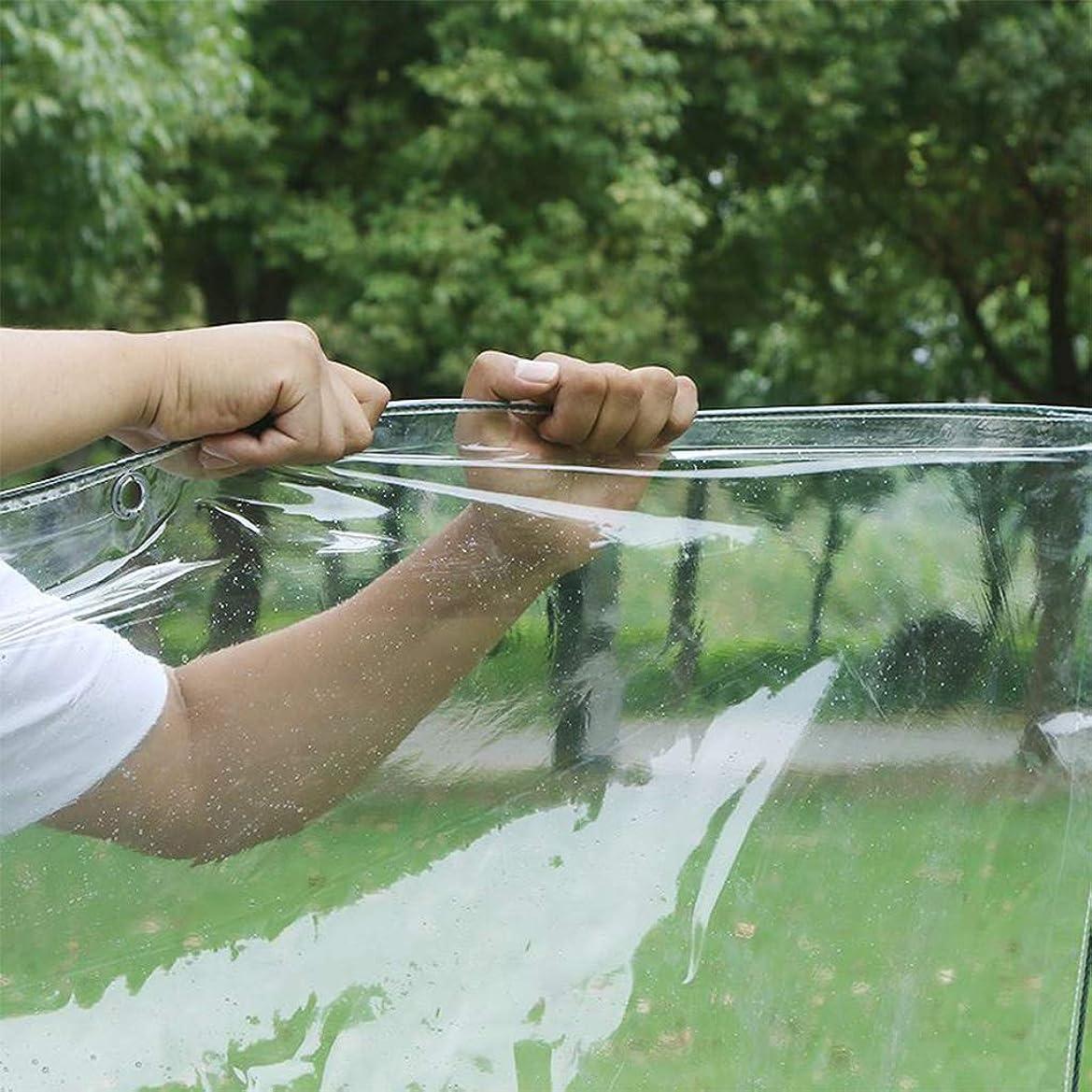 理論鈍いジャズ透明ターポリン 屋外 防水 保護ターポリン 透明な耐水シート 防水透明なターポリン 庭のバルコニーの雨カーテン 屋外テント レインカバー プラスチック布 防風引き裂き抵抗 厚手 クリアー シート の 500g / m2、8サイズ 雨カーテン