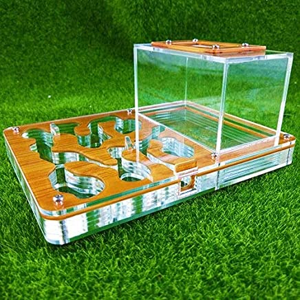 KDGPUM Big Size New Design DIY with Feeding Area Ant Nest Ant Farm Acrylic Villa Pet Mania for House Ants Insect Ant Workshop : 03