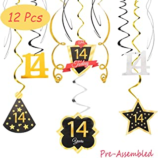Happy 14th Birthday 14 Party Decoration Silver Black Gold Foil Swirl Streamers I'm Fourteen Years Old Today Birthday Hat Gold Star Ornament Party Present Supplies