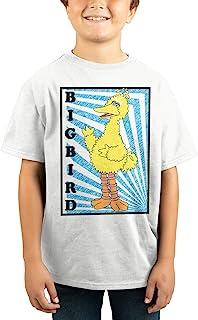 Youth Boys Big Bird Sesame Street Shirt Big Bird Apparel