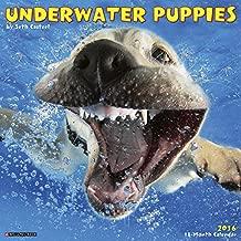 2016 Underwater Puppies Wall Calendar