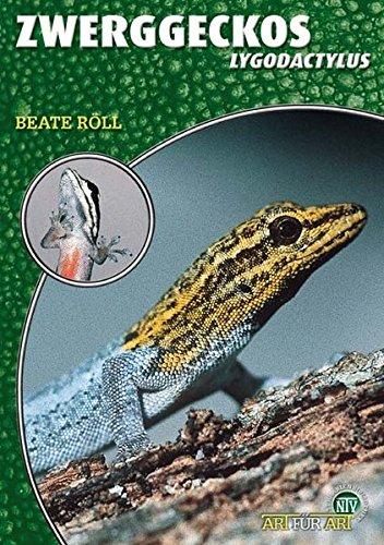 Zwerggeckos: Lygodactylus (Art für Art: Terraristik)