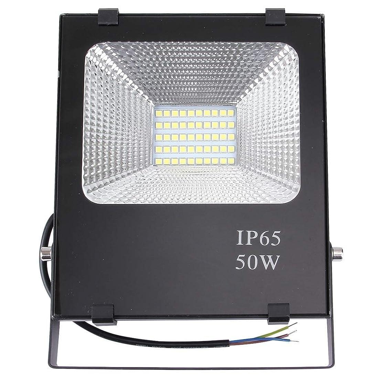 詩より良い序文LED アウトドアライト 超高輝度ランタン 屋外照明50W 2700-6500K SMD-5054 IP65防水LED投光器ランプ屋外ライト、AC 85-265V 防災 防雨 軽量