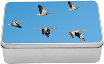 Lunarable Geese Metal Box, Flock of Migrating Greylag Geese Birds Flying in V Formation Clear Sky Picture Print, Multi-Purpose Rectangular Tin Box Container with Lid, 7.2
