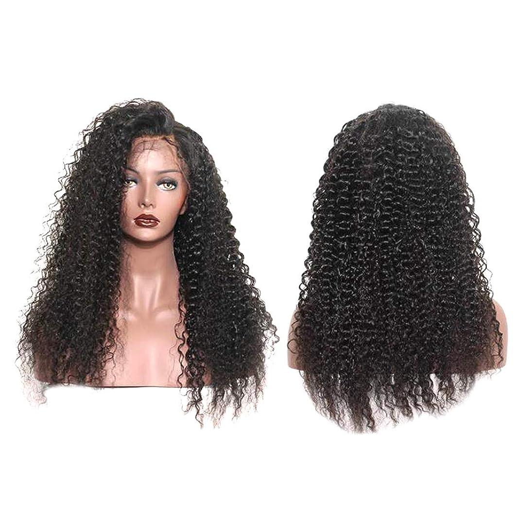 セグメントホバー切り刻む女性ファッション長い巻き毛のかつらフロントレースカールかつら自然に見える絶妙な弾性ネットかつらカバー(LS-013)