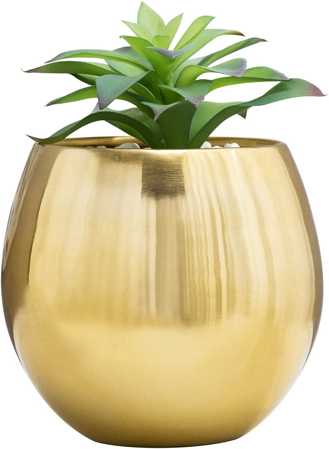 It is very popular MyGift 6-Inch Brushed NEW before selling ☆ Brass Plated Bowl-Shaped Succu Metal Round