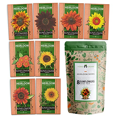 8 Sunflower Seeds to Plant | Bulk 1000+ Seeds | Heirloom Seeds | Non-GMO Flower Seeds for Planting Outdoors | Garden Seeds for Baby Shower Favors or Wedding Favors | for Birds and Bees